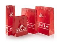 AP808750c torba papierowa 260x330x120mm
