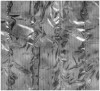 39323994f Kurtka narciarska Ozark XL Male