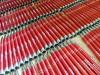 C czerwony COSMO długopis metalowy