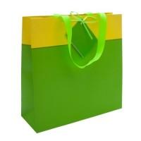 29872p-05 kolorowa torba na prezenty